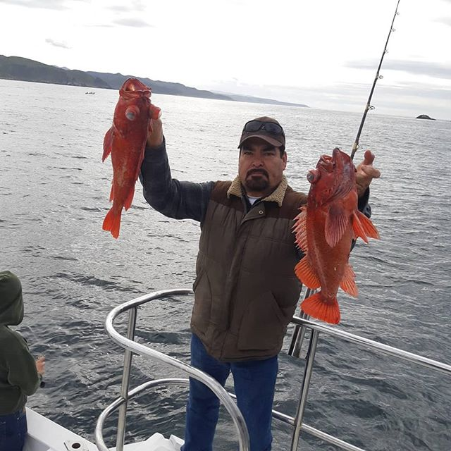 rockot fishing ensenada
