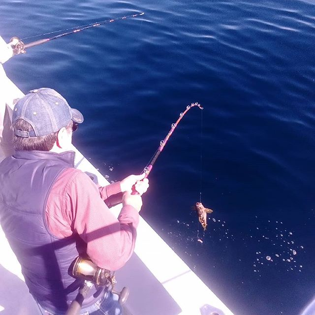 sportfishing todos santos harbor